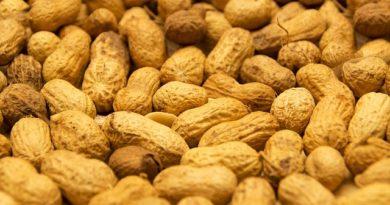Erdnüsse Vitamin E